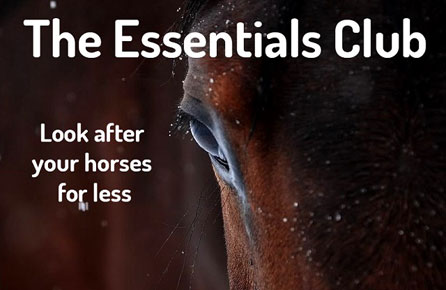 Join the Equestrian Index Essentials Club