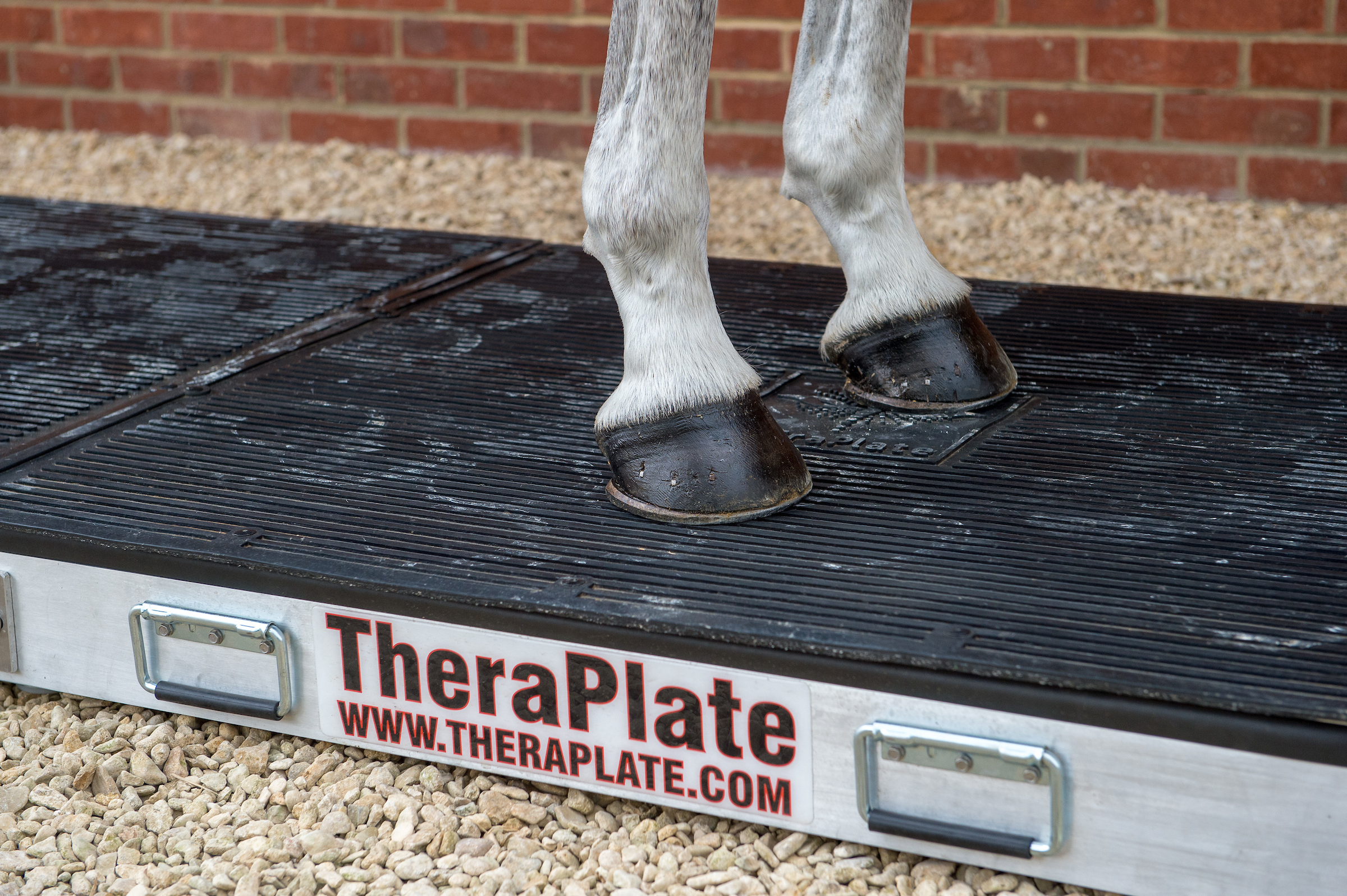 Win a theraplate