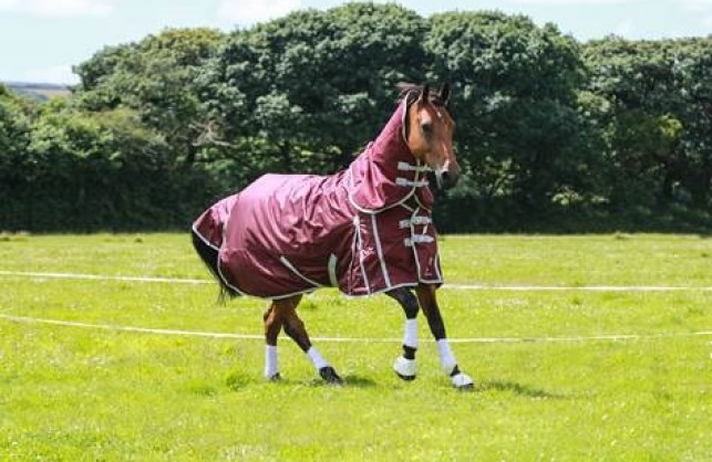 The only rugs that work with electric fencing!