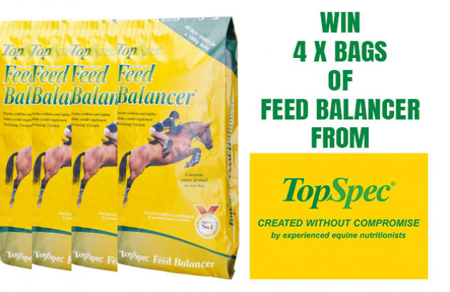 WIN 4 BAGS OF TOP SPEC FEED BALANCER